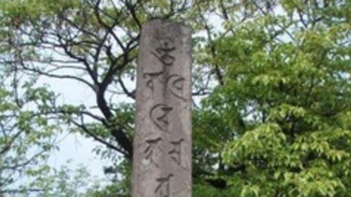 五智国分寺にいきました(新潟県上越市)