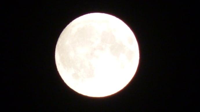♪ お月様今晩わ~