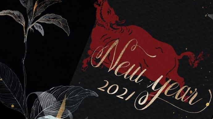 新年明けましておめでとうございます‼️