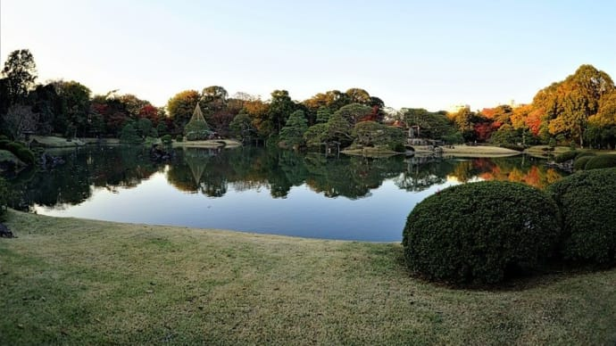 東京の今朝の天気(12月12日):晴れ