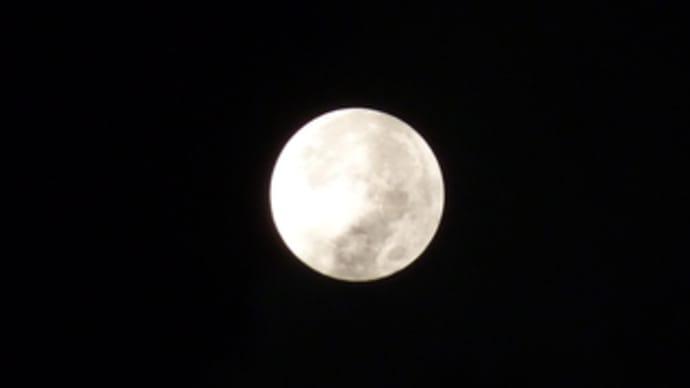 今夜は満月。