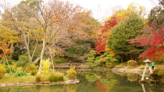 有栖川記念公園 紅葉