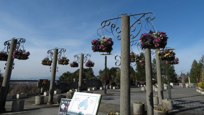 ハーブの園~ウィンター・ガーデン in 宇治市植物公園(1)