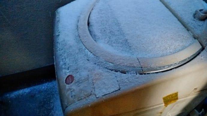 前代未聞、大雪の中の季節外れの山大工