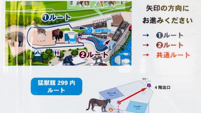 【日本平動物園】猛獣館299 ②ホッキョクグマ&シロフクロウ