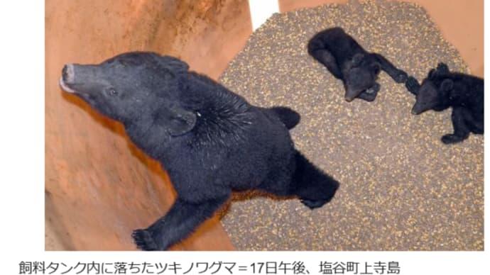 飼料タンクから出られなくなった 熊の親子