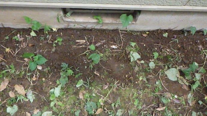土の中での漏水・・・千葉市