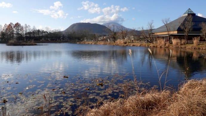 冬木立の軽井沢へ