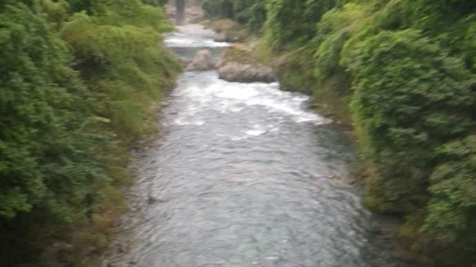 7月21日 那比川で鮎釣り!