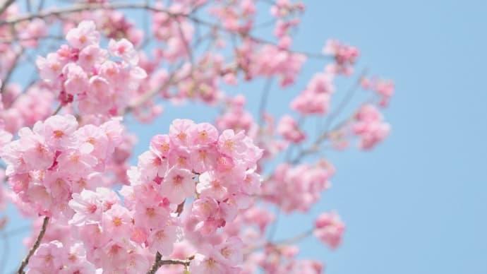 【 おかあさん 】 もう、3月ですねぇ!(^^)