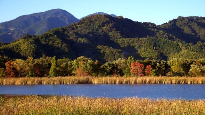 秋色遊水地