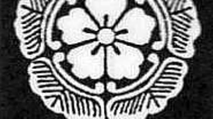 黄金水松(こがねみずまつ)