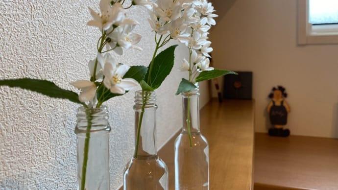 家の中にも花を。。。ヒメウツギ、ラベンダー、パレード