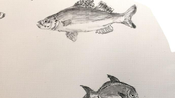 魚のいろいろを描きこみ作業、続き。