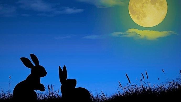 中秋の名月🎑お月見団子🍡