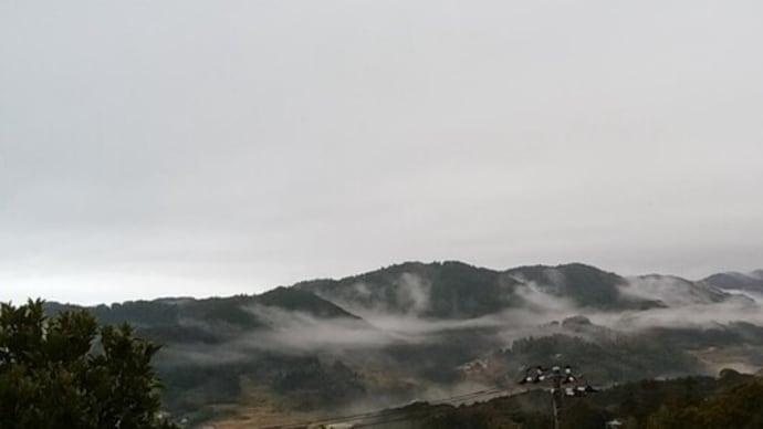朝靄(あさもや)