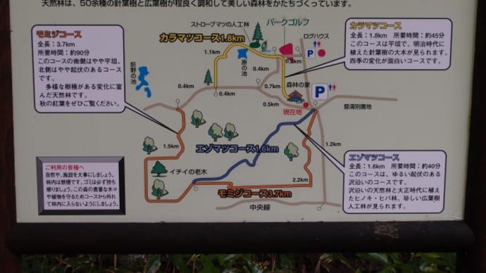 野幌森林公園の中を少し歩いてから道の駅つるぬまに来た(2015/7/19)