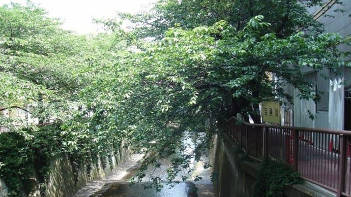 2010年6月11日、池尻大橋駅(2)
