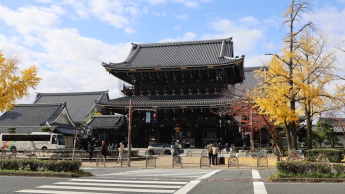 東本願寺とゴールドの銀杏