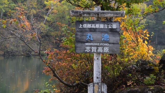 志賀高原へ秋の散歩!