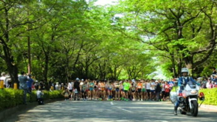 2013武相マラソン