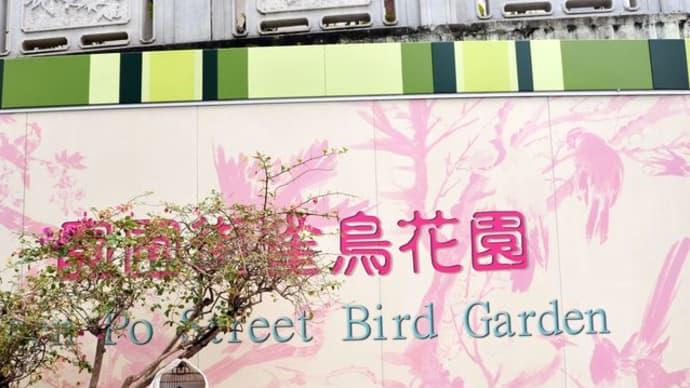 香港ローカルストリート散策♪