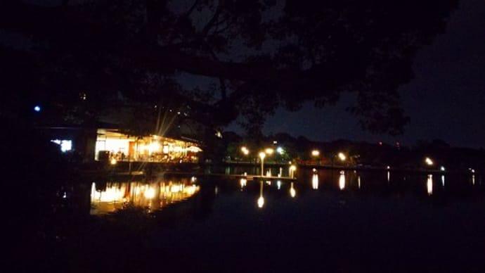 火曜の夜に博多を歩いてごらん♪
