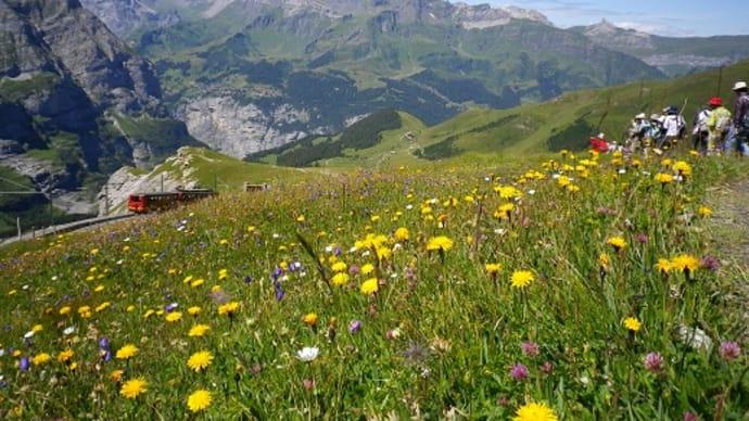 予告編~スイスへの旅