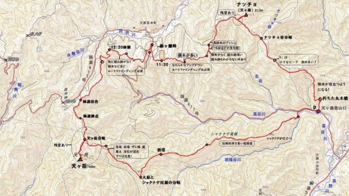 京都北山中心部のお山 天ヶ岳 5