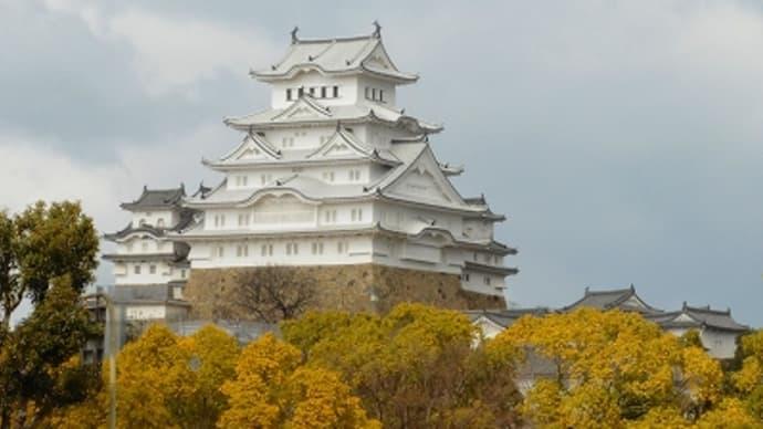 今日の姫路城 (2015.2.1)