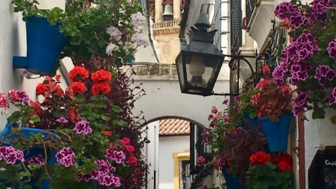 パティオの街は花盛り@コルドバ