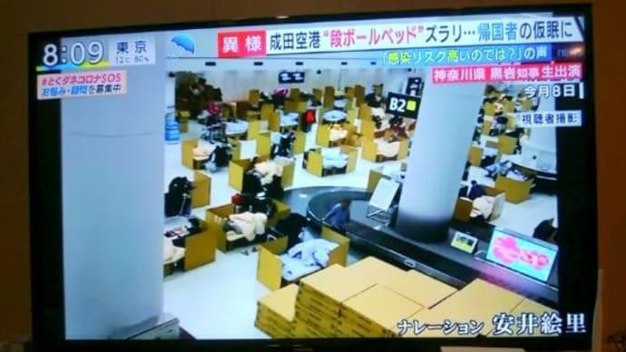 空港 段ボール ベッド 成田