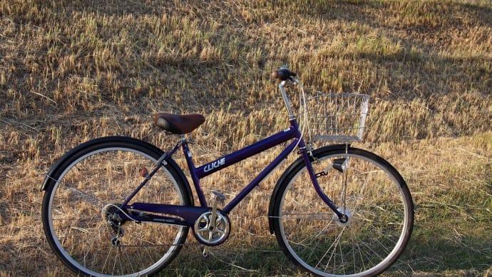 自転車は1か月ほど前に手元から離れました。