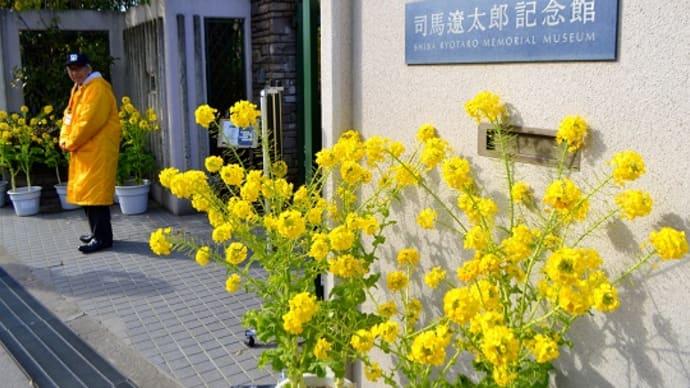 四季彩館  ~花色移ろいのページ
