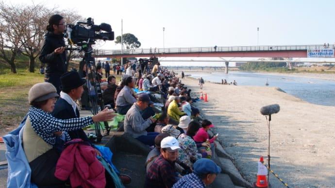 西条祭りのフィナーレは迫力の川入り(2015/10/16-2)