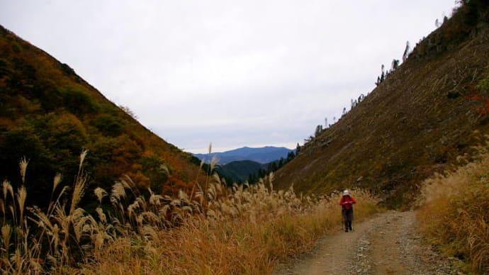 とんがり山(981m)