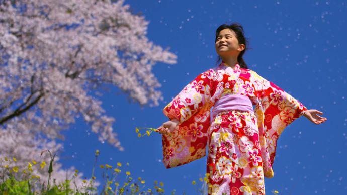 【作品募集】第50回記念南日本写真展が開催されます