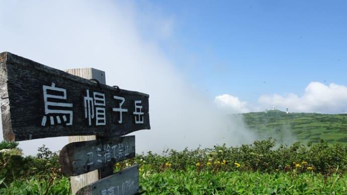 烏帽子岳山頂の山野草2019年8月1日