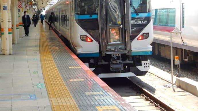 E257系 踊り子 【東京駅:東海道線】 2020.3.19