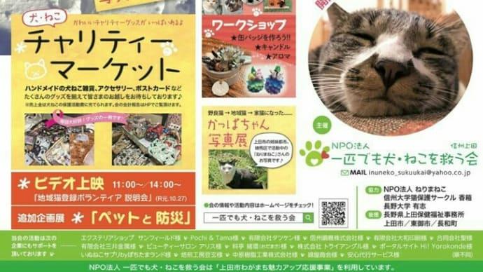 明日は上田市のイベントに出店します!