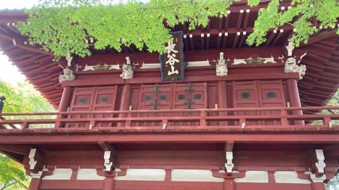 紫陽花寺と呼ばれる本土寺へ社会科見学 2020/11/8