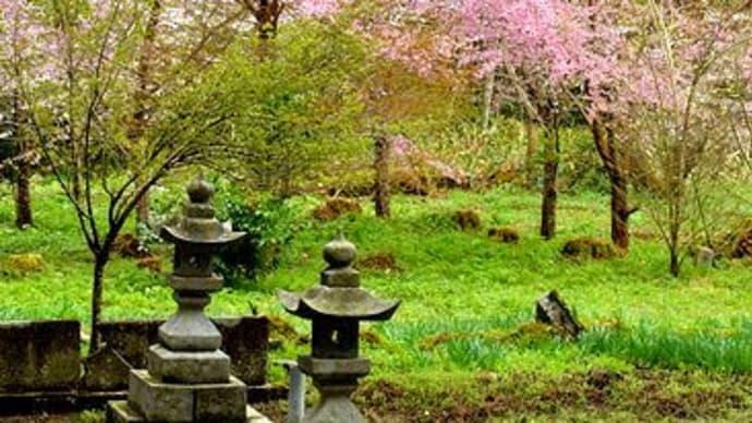 8804 楽々福神社 / 日南町