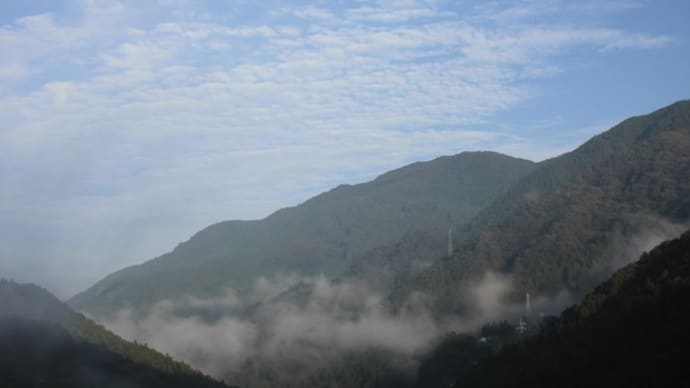 令和元年8月25日・今朝の東祖谷13.5℃