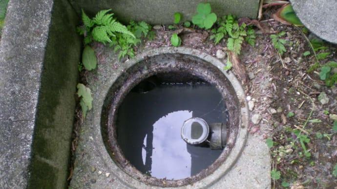 汚水桝の交換