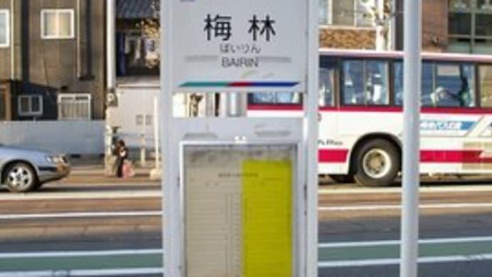 2005年3月遠征その8(美濃町線駅降り2)3/19