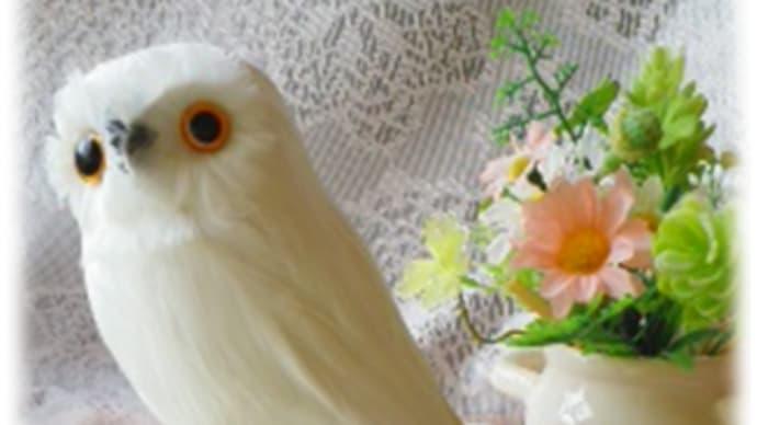 my White Owl