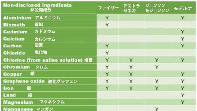酸化グラフェン / イベルメクチン