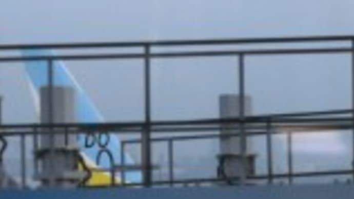 米チャーター機が出発クルーズ船客帰国へ