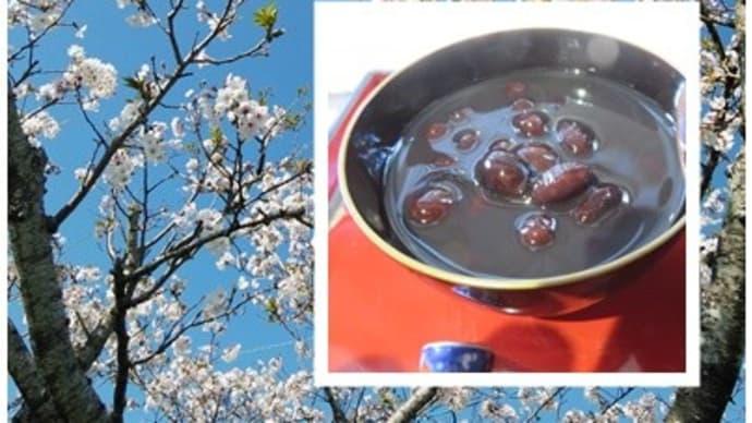 庭の桜とぜんざい