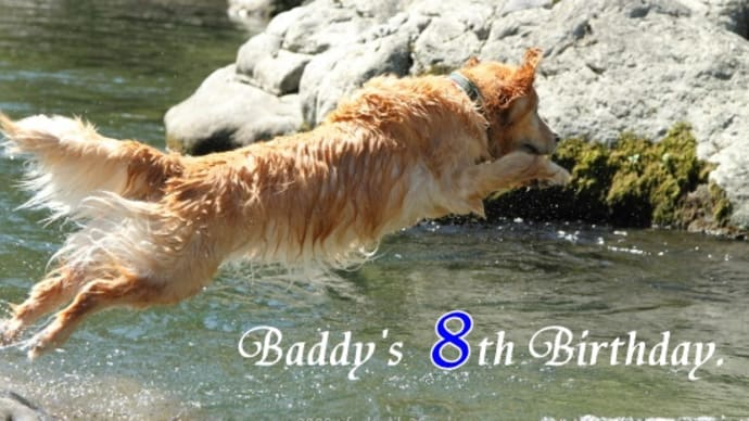 Baddy's 8th Birthday.